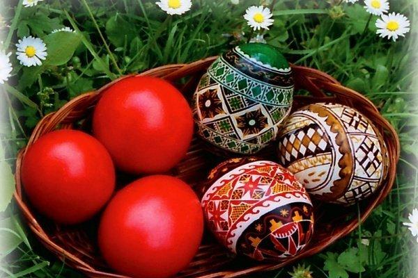 trucuri vopsit oua